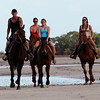 "Sept 10th: Cape Tribulation: Horses on Beach: : Doreen & other riders......hope these bring back fond memories of a fabulous day at the beach.....thanks for letting me ""practice"" with my new camera that I bought a few days before I left the US.  Feel free to download these: 1) place your cursor over the large picture on the right...2) wait a second...3) when the pop up menu appears, select ""Original""...4) wait...after that file loads, simply right click and save to your PC. Notice the file names when you download some are copies, cropped or edited ( B&W) versions. Hope your summer is going well......we're starting to see fall like weather here in Arizonia.   Best of juju, Curtis"
